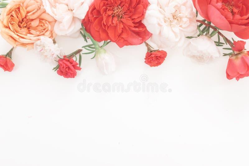 Рамка от цветка в пастельных цветах стоковое изображение rf