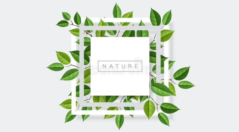 Рамка природы квадратная с ветвями и листьями бесплатная иллюстрация