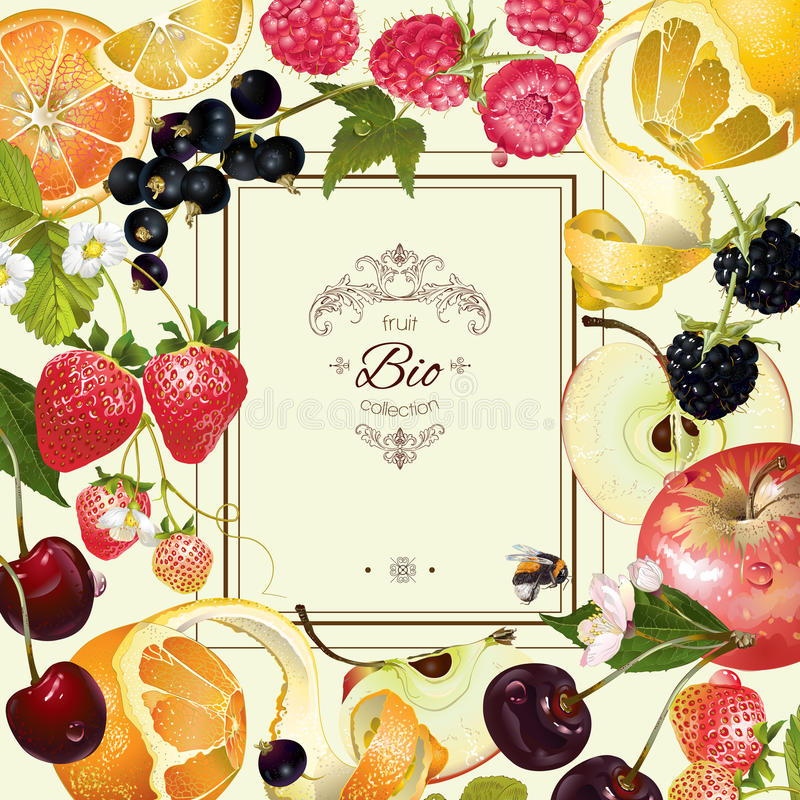 Рамка плодоовощ и ягоды бесплатная иллюстрация