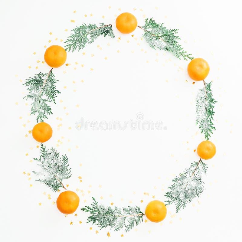 Рамка рождества с ветвями дерева зимы и цитрусовыми фруктами на белой предпосылке Плоское положение Взгляд сверху стоковые фотографии rf