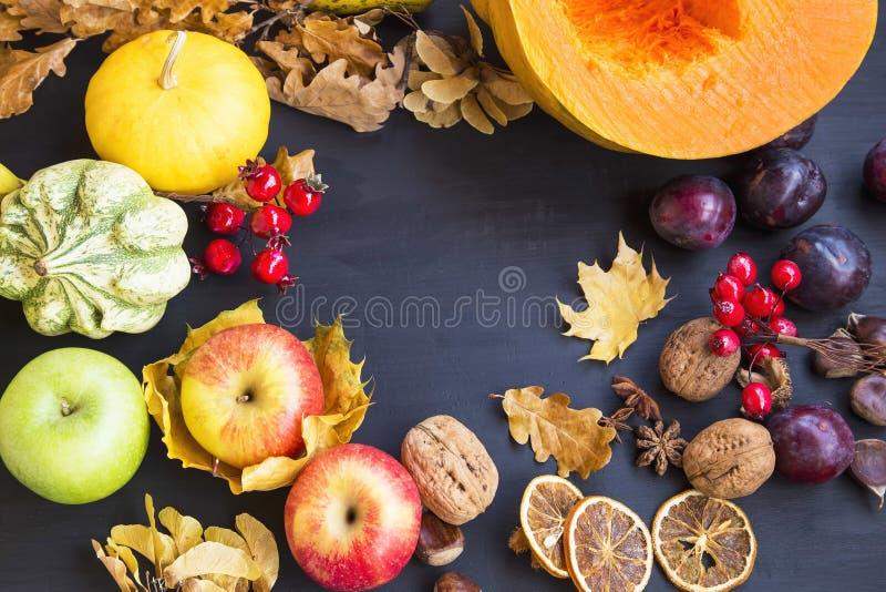 Рамка сбора осени с яблоками, тыквами, гайками, высушенными сливами, стоковая фотография rf