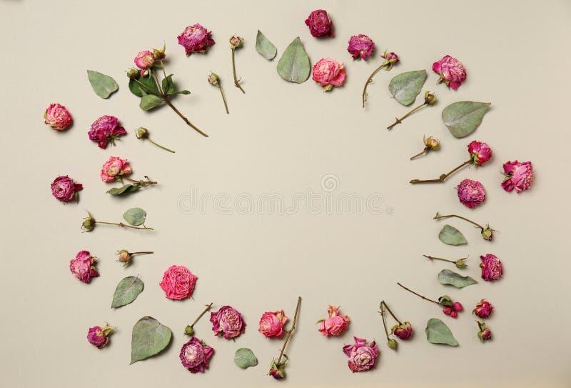 Рамка сделанная красивых сухих роз на светлой предпосылке стоковая фотография rf