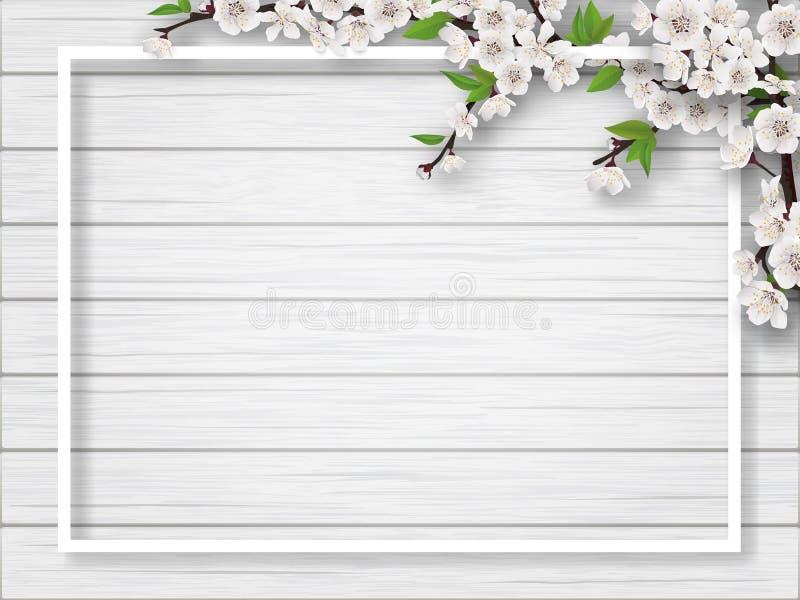 Рамка с ветвями вишни весны цвести бесплатная иллюстрация