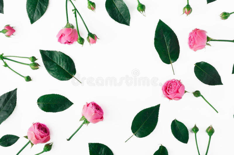 Рамка сделанная из розовых роз и листьев зеленого цвета стоковые фотографии rf