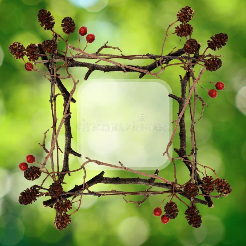 Рамка сделанная от сухих хворостин стоковое фото