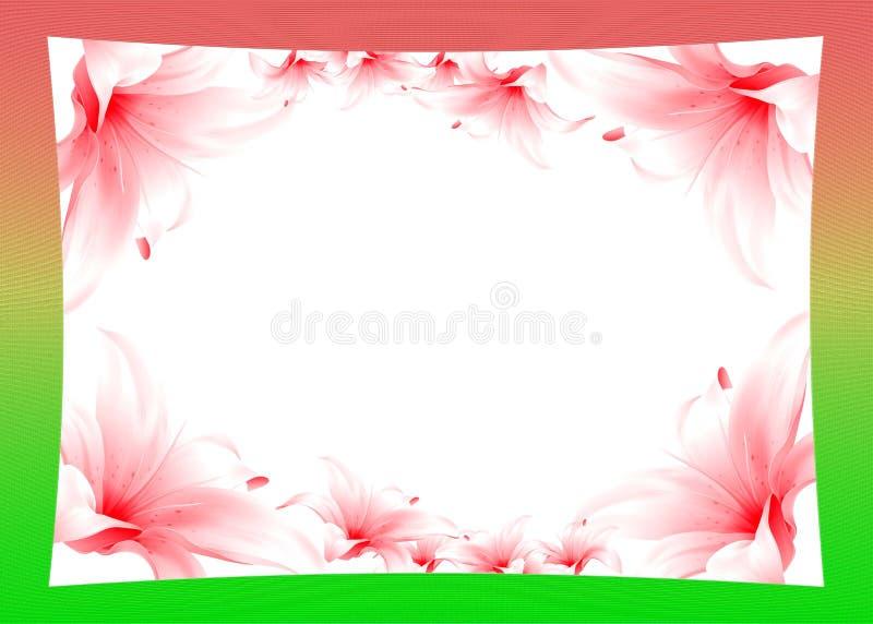 Рамка с лилией стоковые изображения