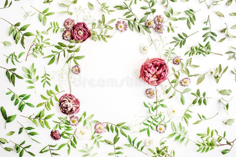 Рамка с розовыми розами, ветвями, листьями и лепестками на белой предпосылке стоковые изображения