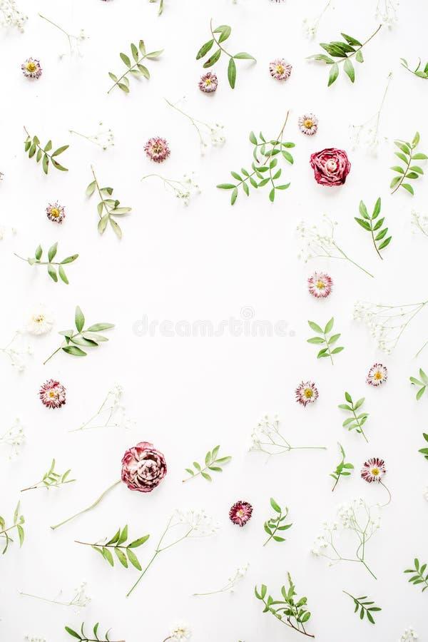 Рамка с розовыми розами, ветвями, листьями и лепестками стоковое изображение