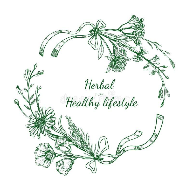 Рамка травяного эскиза круглая бесплатная иллюстрация