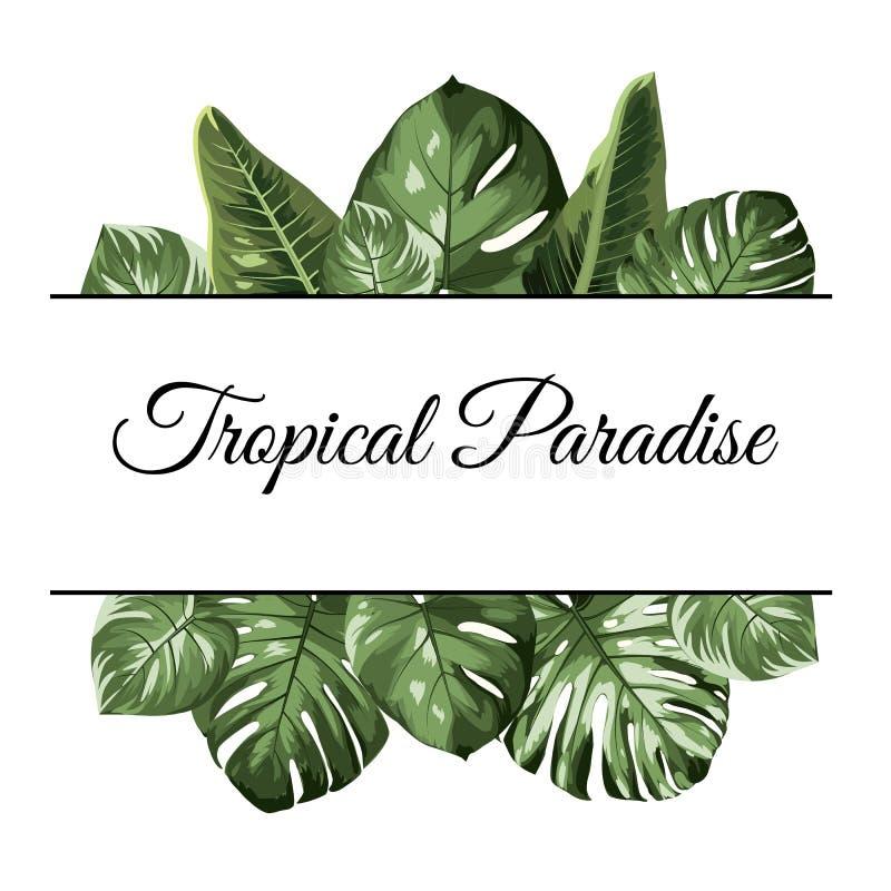Рамка тропического рая верхняя нижняя Экзотическая растительность тропического леса джунглей Листья филодендрона monstera пальмы бесплатная иллюстрация