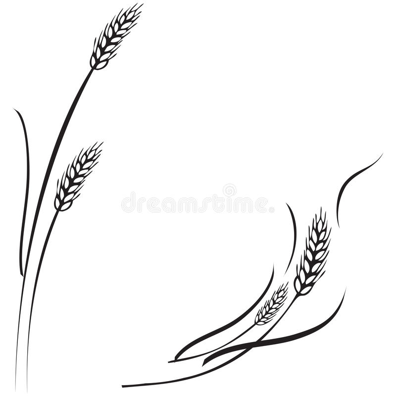 Рамка ушей пшеницы, граница или угловой элемент бесплатная иллюстрация