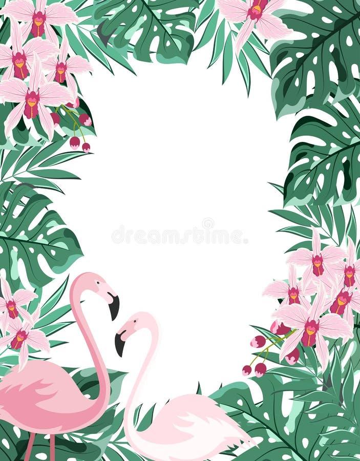 Рамка фламинго флористическая бесплатная иллюстрация