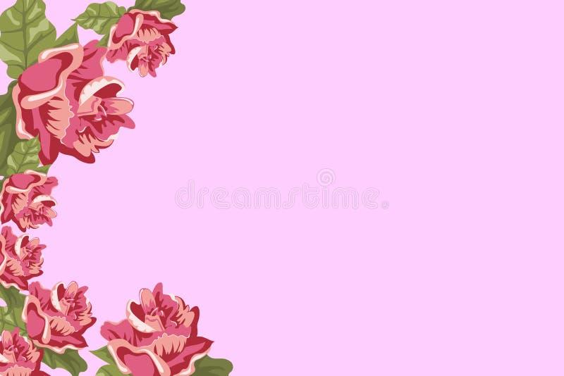 Рамка фото, цветки розы пинка и бутоны на крае, иллюстрации иллюстрация вектора