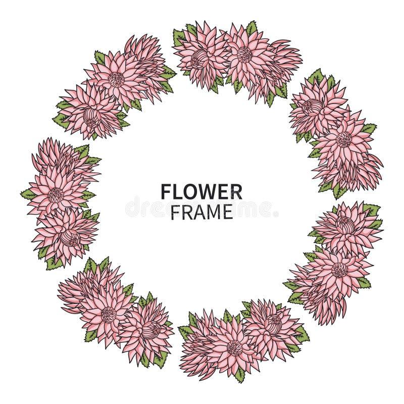 Рамка цветка хризантемы Флористическая печать венка для поздравительной открытки и приглашения Красивый букет с розовыми астрами иллюстрация штока