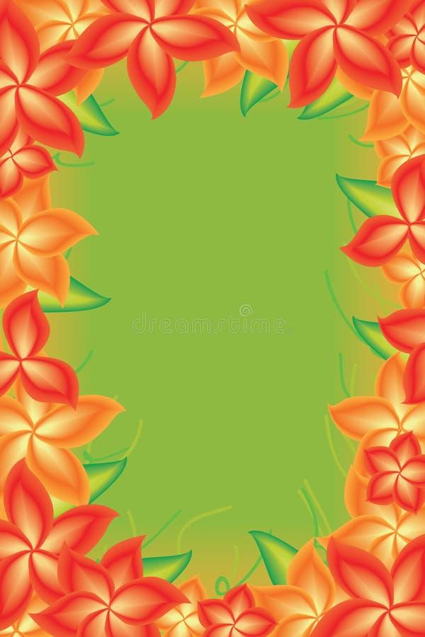 Рамка цветка яркая ая-зелен иллюстрация вектора