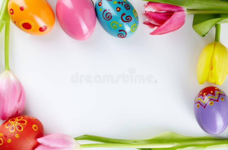 Рамка яичка и тюльпана стоковые фотографии rf