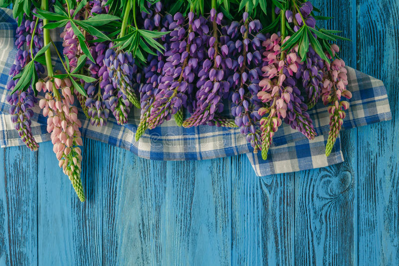 Рамка lupines на предпосылке бирюзы деревенской деревянной стоковое изображение rf