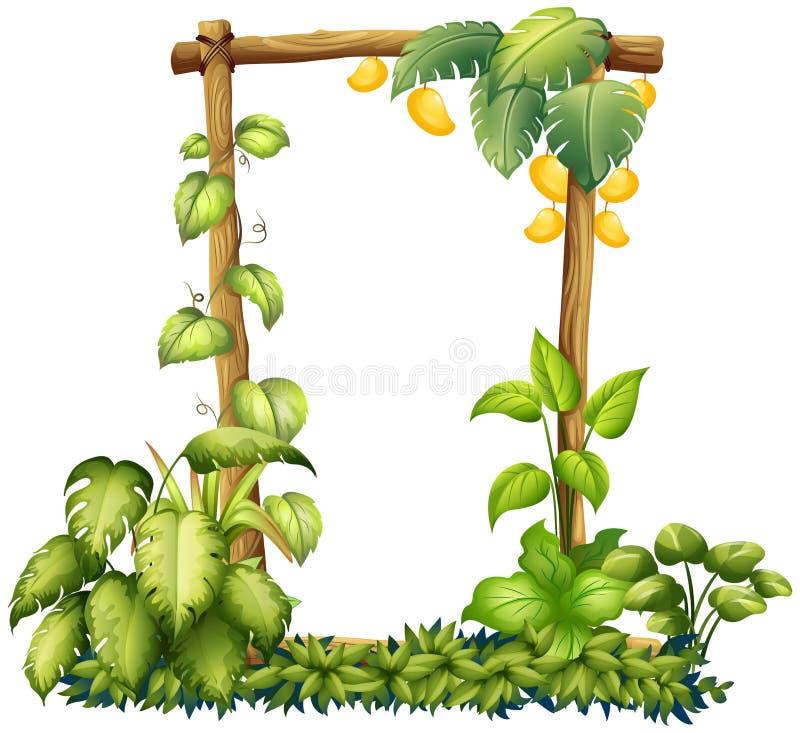 Рамка Nrtural манго деревянная иллюстрация вектора