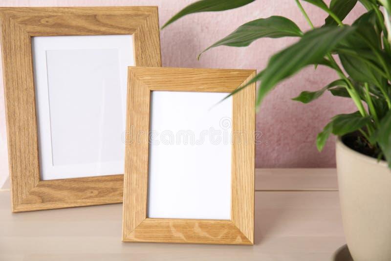 Рамки завода и фото Spathiphyllum на таблице около стены цвета стоковые изображения rf