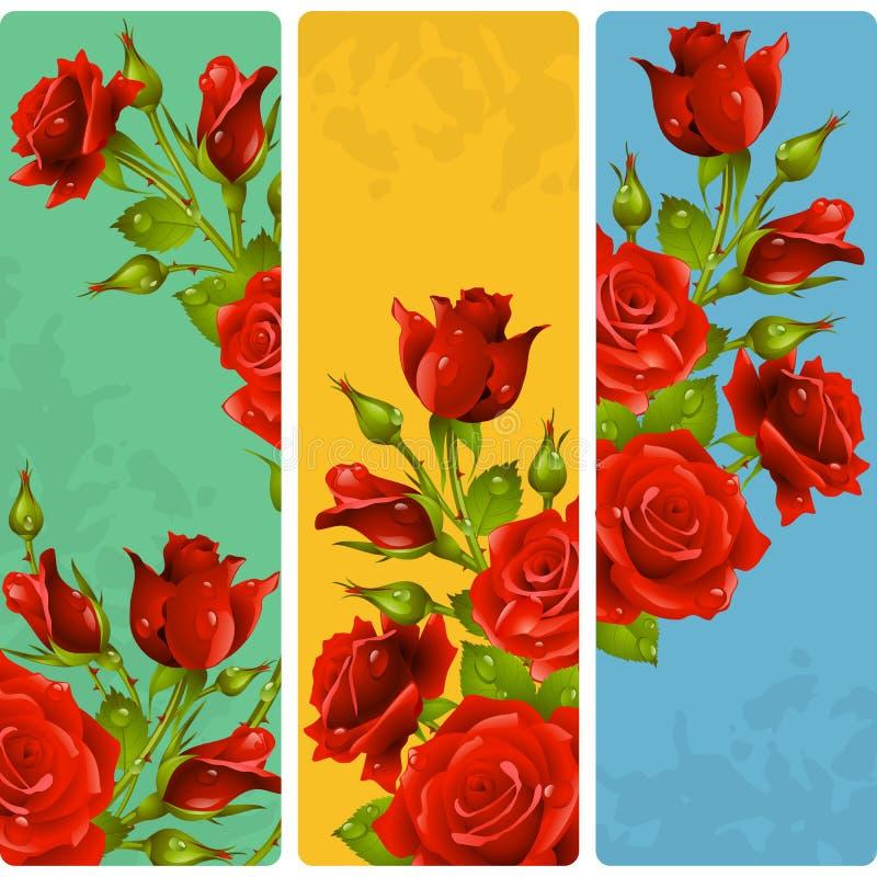 Рамки красной розы вектора Комплект флористических вертикальных знамен иллюстрация штока