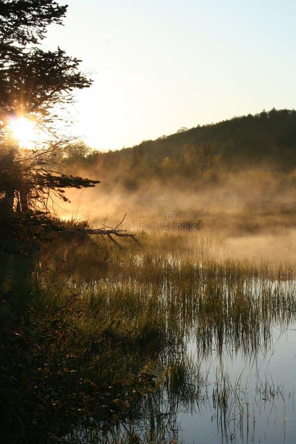 раннее утро северный ontario стоковые изображения