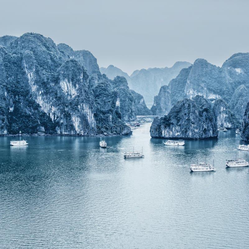 Рано утром ландшафт с голубой плавать старь тумана и туриста стоковая фотография rf