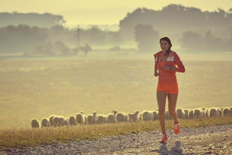 Рано утром бег стоковая фотография