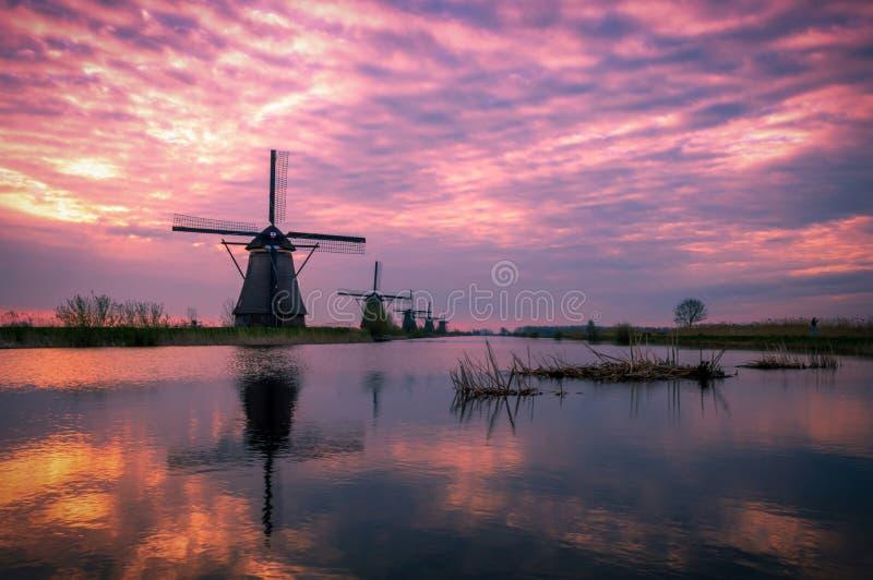 Рано утром в Kinderdijk, Голландия стоковые фотографии rf