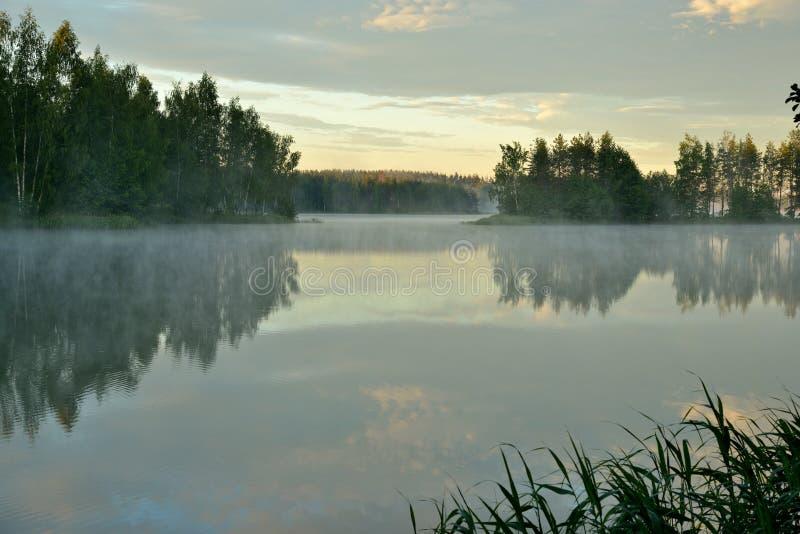 Рано утром на озере с спокойной туманной водой стоковые изображения rf