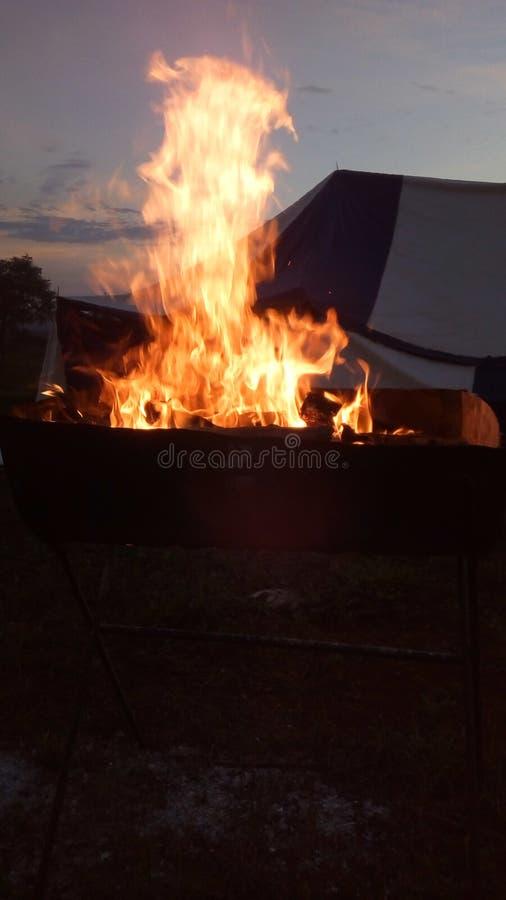 Рано утром огонь стоковые фотографии rf