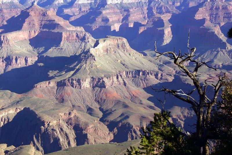 Download Рано утром осветите на выветренных гребнях над Колорадо Стоковое Фото - изображение насчитывающей природа, оправа: 40590014