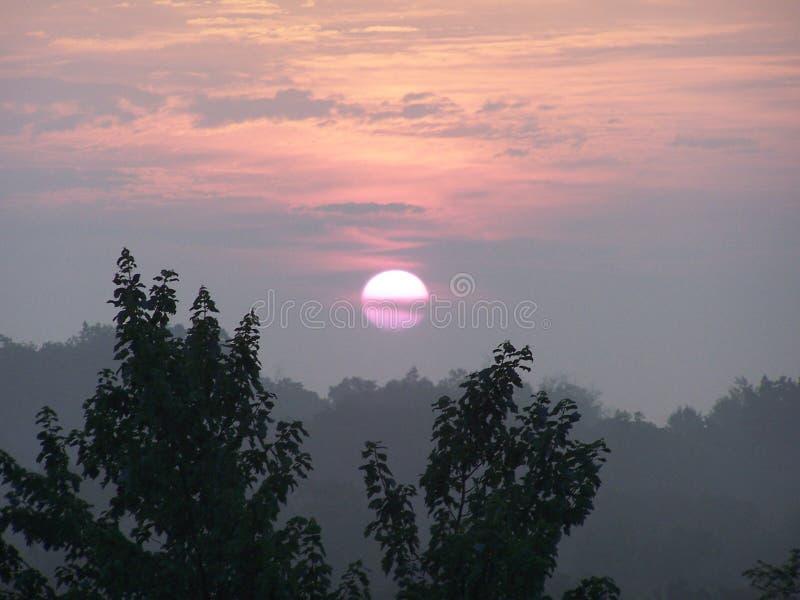 Рано утром Солнце стоковое изображение rf