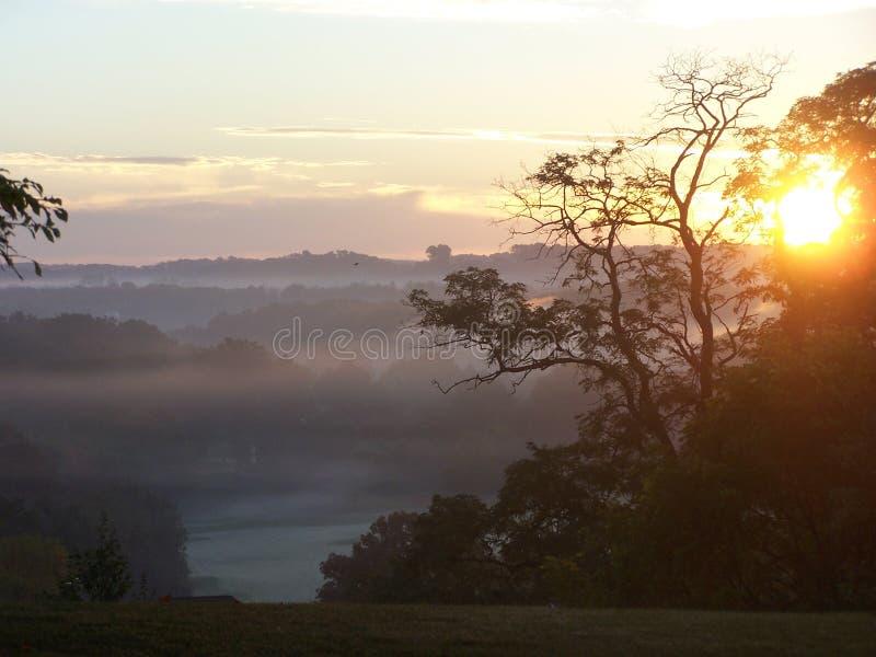 Рано утром туман на поле для гольфа стоковое фото rf