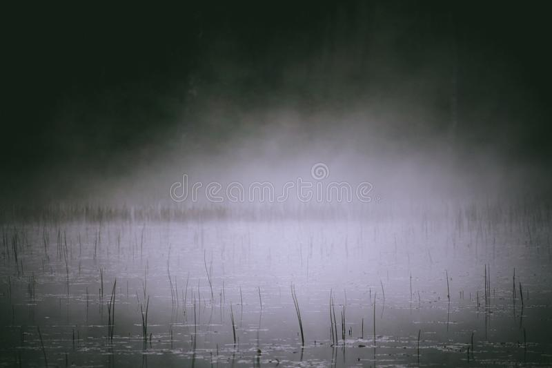 Рано утром туман поднимая с озера стоковое фото rf