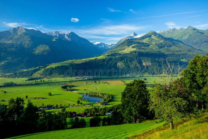 Рано утром четкое представление лугов около Piesendorf с Snowy Kitzsteinhorn на заднем плане стоковое изображение