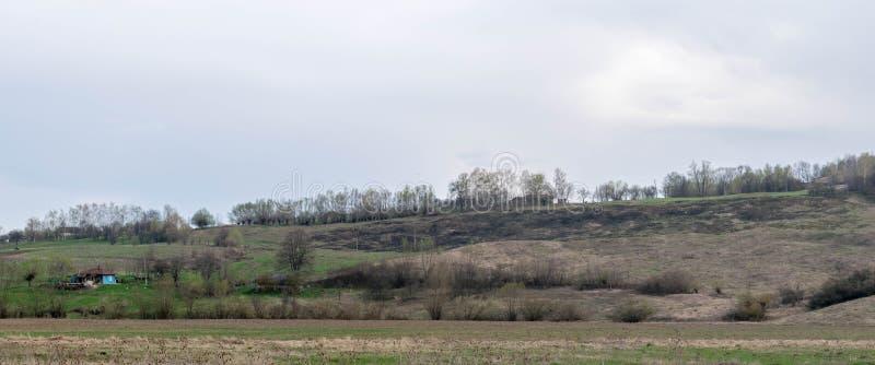 Расквартируйте и, который палят поле на горном склоне стоковая фотография rf