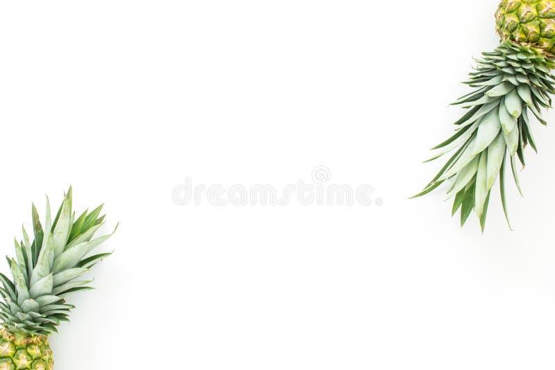 Раскосный ананас увенчивает предпосылку стоковые фото
