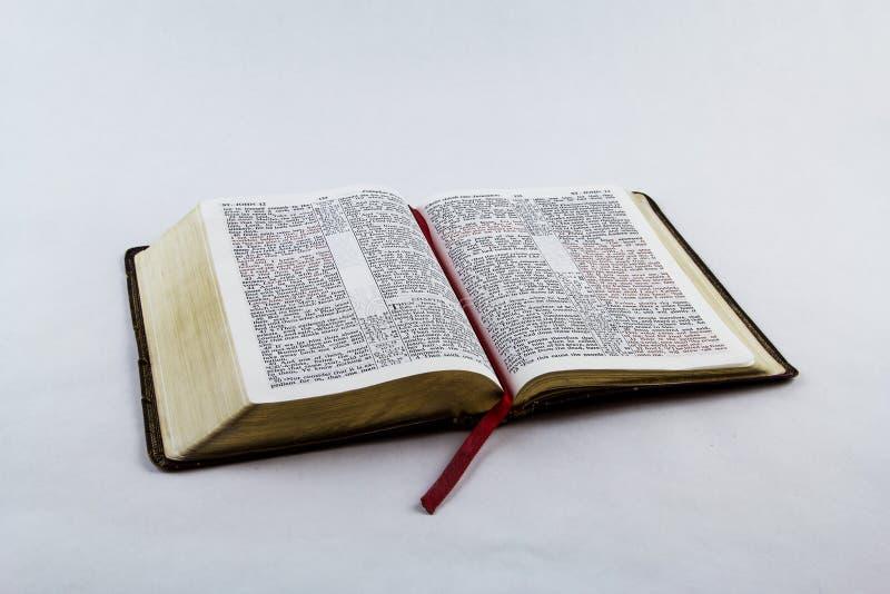 Раскройте библию на белой предпосылке стоковые изображения
