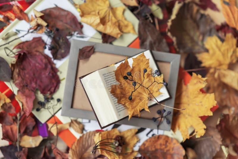 Раскройте книгу в конце-вверх деревянной рамки, взгляд сверху, солнечном дне падения, предпосылке осени, красочных листьях, роман стоковая фотография
