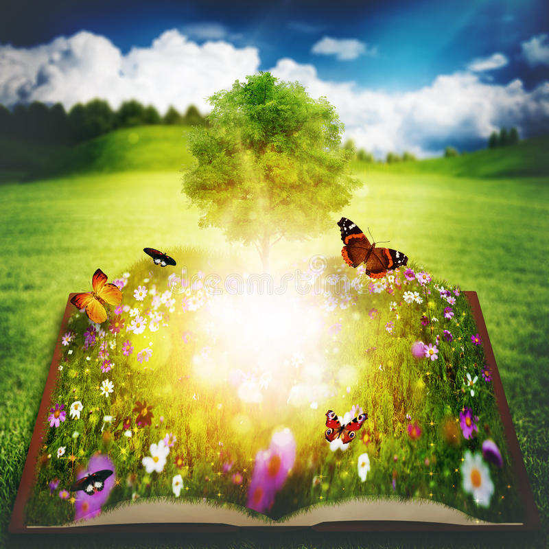 Раскройте книгу с деревом знания стоковая фотография rf