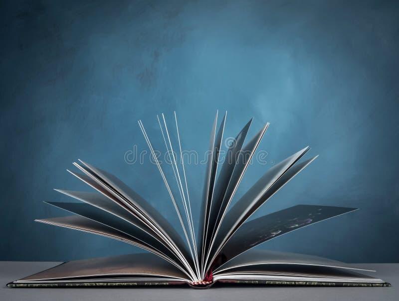 раскрытая книга стоковое изображение rf