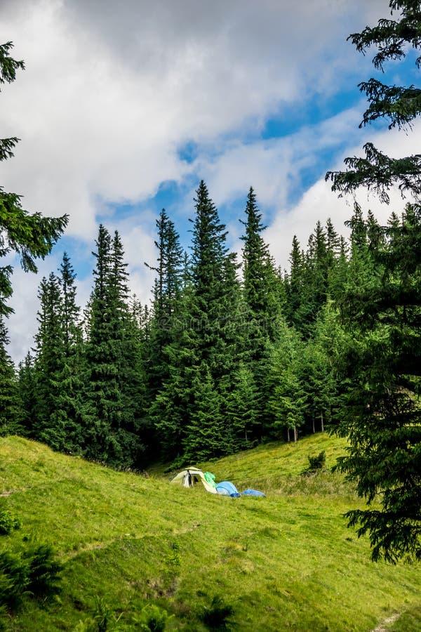 Располагаться лагерем Шатер около леса стоковое изображение