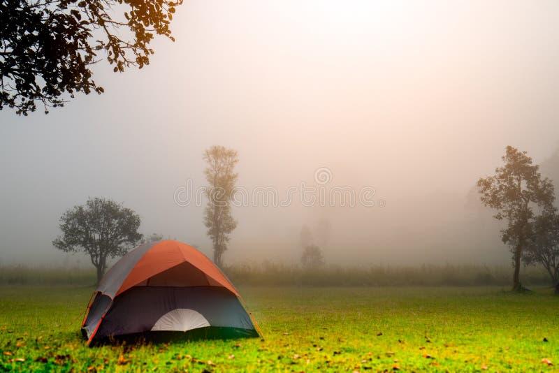 Располагающся лагерем в лесе с шатром на национальном парке Thung Salaeng Luang, провинция Thailnad Phitsanulok стоковые фото