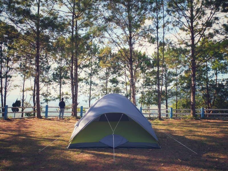 Располагаясь лагерем шатер на земле МЛАДЕНЦА, Khao Kor, Petchabun, Таиланде стоковое фото rf