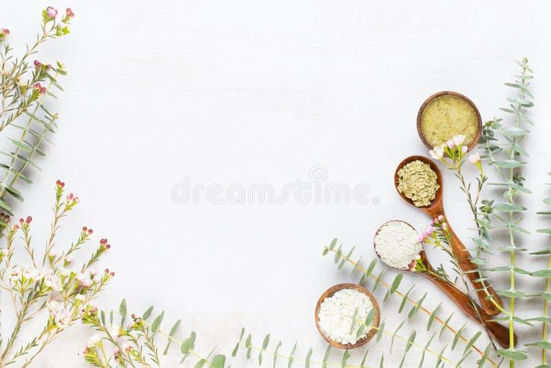 Расположение био травяных зеленых ветвей эвкалипта косметическое, соль моря и handmade косметика стоковые изображения