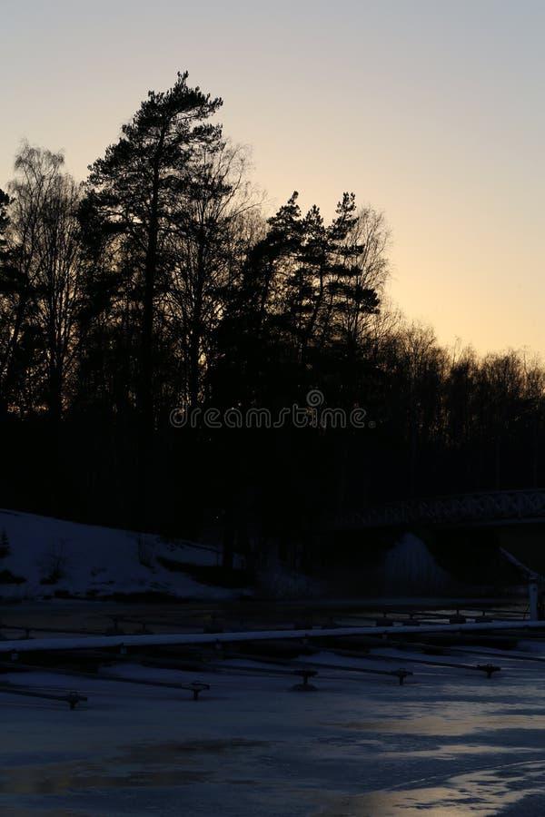 Расположение Солнца за лесом и Замороженное море в Эспоо, Финляндия стоковое изображение rf
