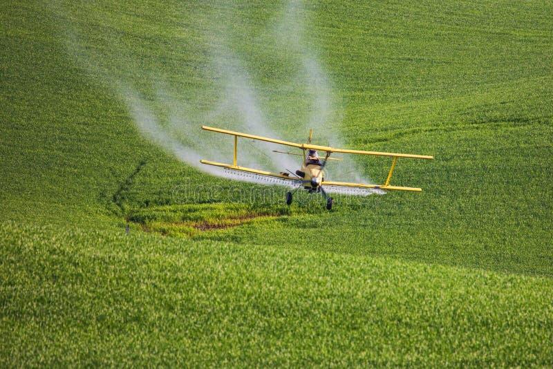 Распыляя инсектицид на пшенице стоковая фотография