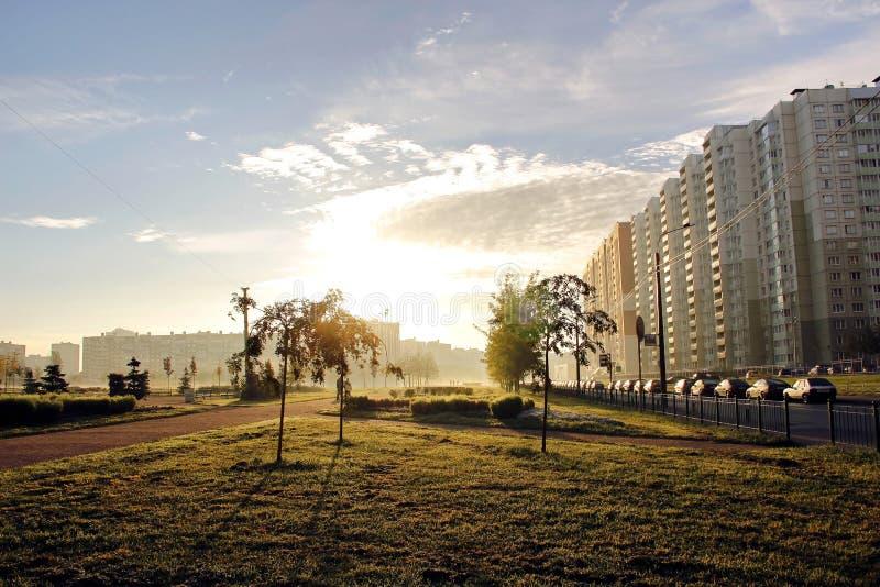Рассветайте в тумане в утре в парке города стоковые изображения rf