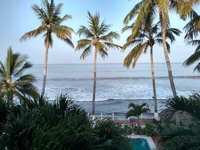 рассветать на пляже стоковая фотография