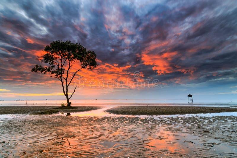 Рассвет внутри идет море Cong стоковое изображение
